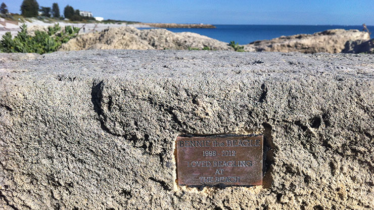 Dog Beach Plaque